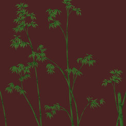 bamboo-281205