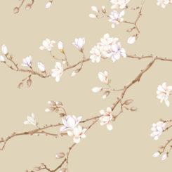 magnolia-281101