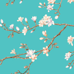 magnolia-281102