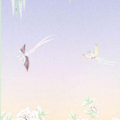 pheasant-flying-280305