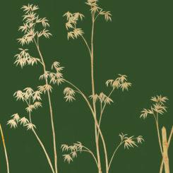 bamboo-281202