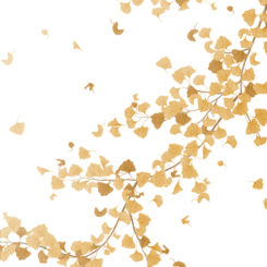 golden-ginkgo-280504