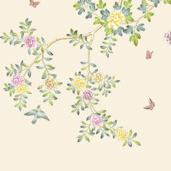 multiflora-rose-281404