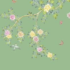 multiflora-rose-281405